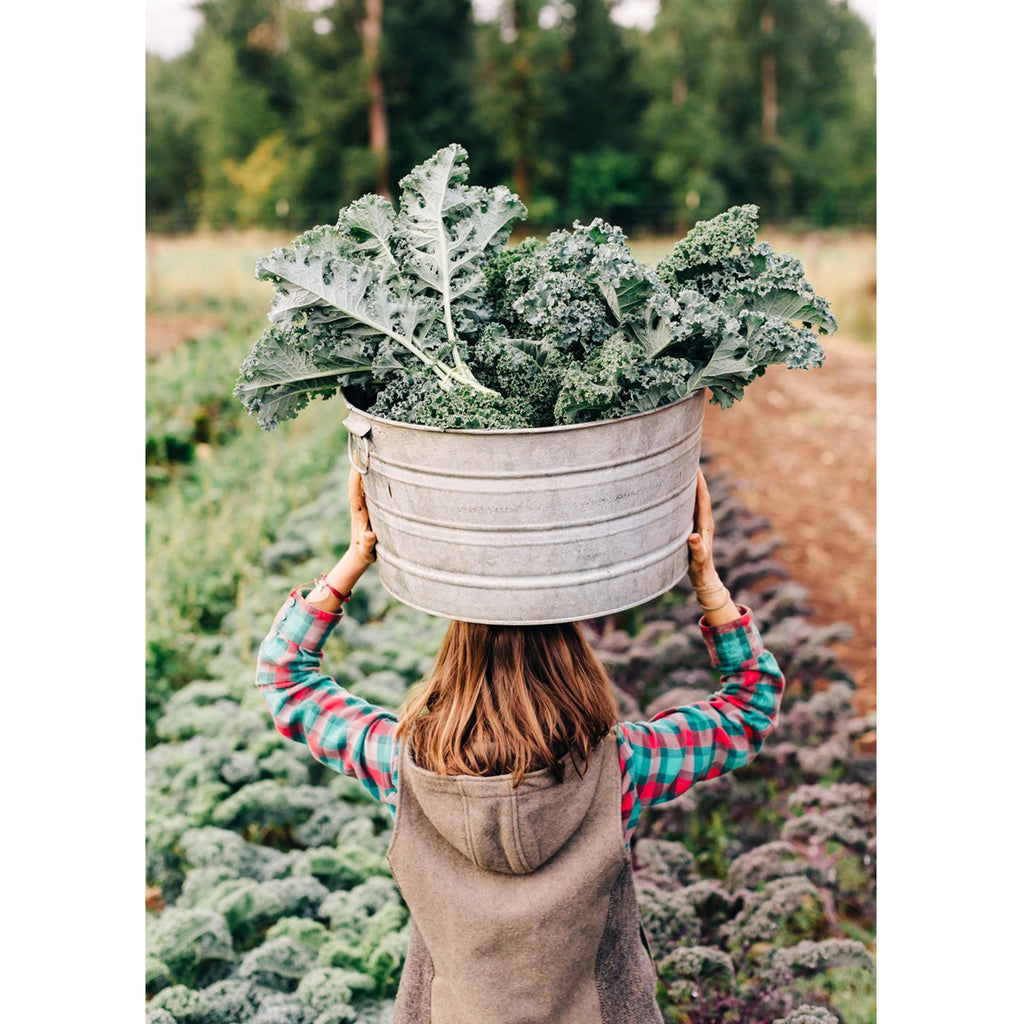 farmlife cookbook inside image woman carrying kale