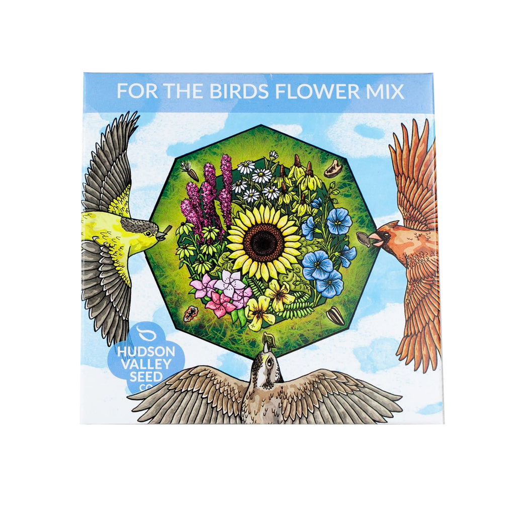 hudson valley seed company for the birds mixed garden seeds art pack packet
