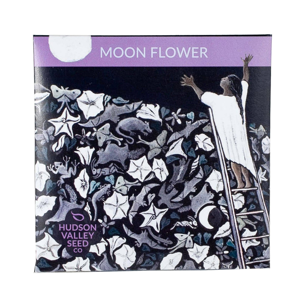 hudson valley seed company moon flower garden seeds in art pack packet