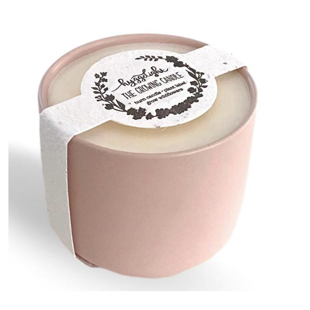 hyggelight the growing candle adelyn sandalwood + vanilla scented soy wax candle with wildflower seed label in packaging