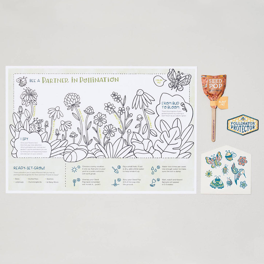 modern sprout global citizen pollinator protector garden activity kit for kids box contents