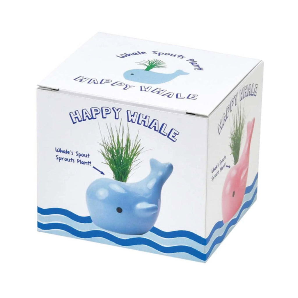 noted happy whale pink ceramic planter grass indoor garden grow kit box