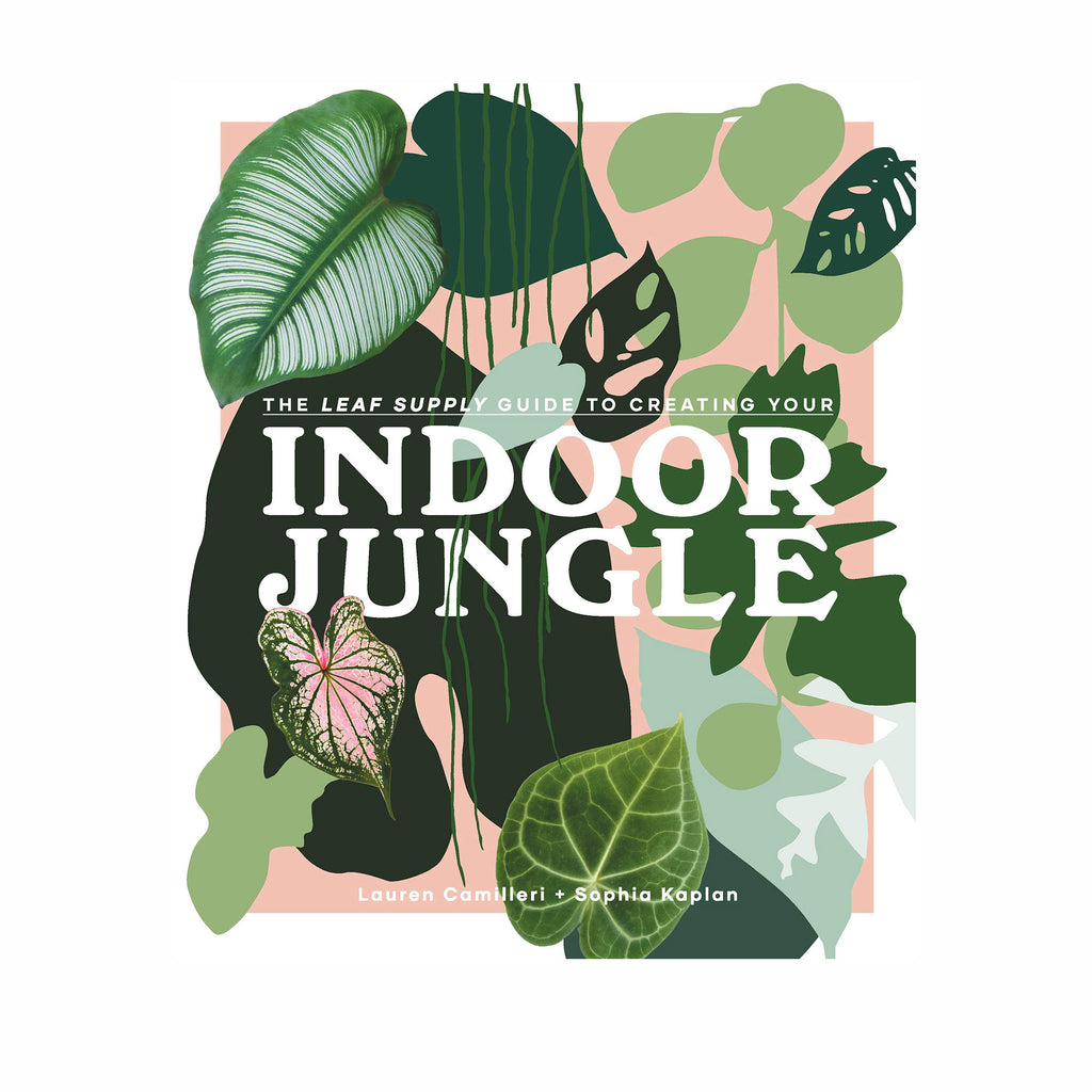 penguin random house the leaf supply guide to creating your indoor jungle book cover