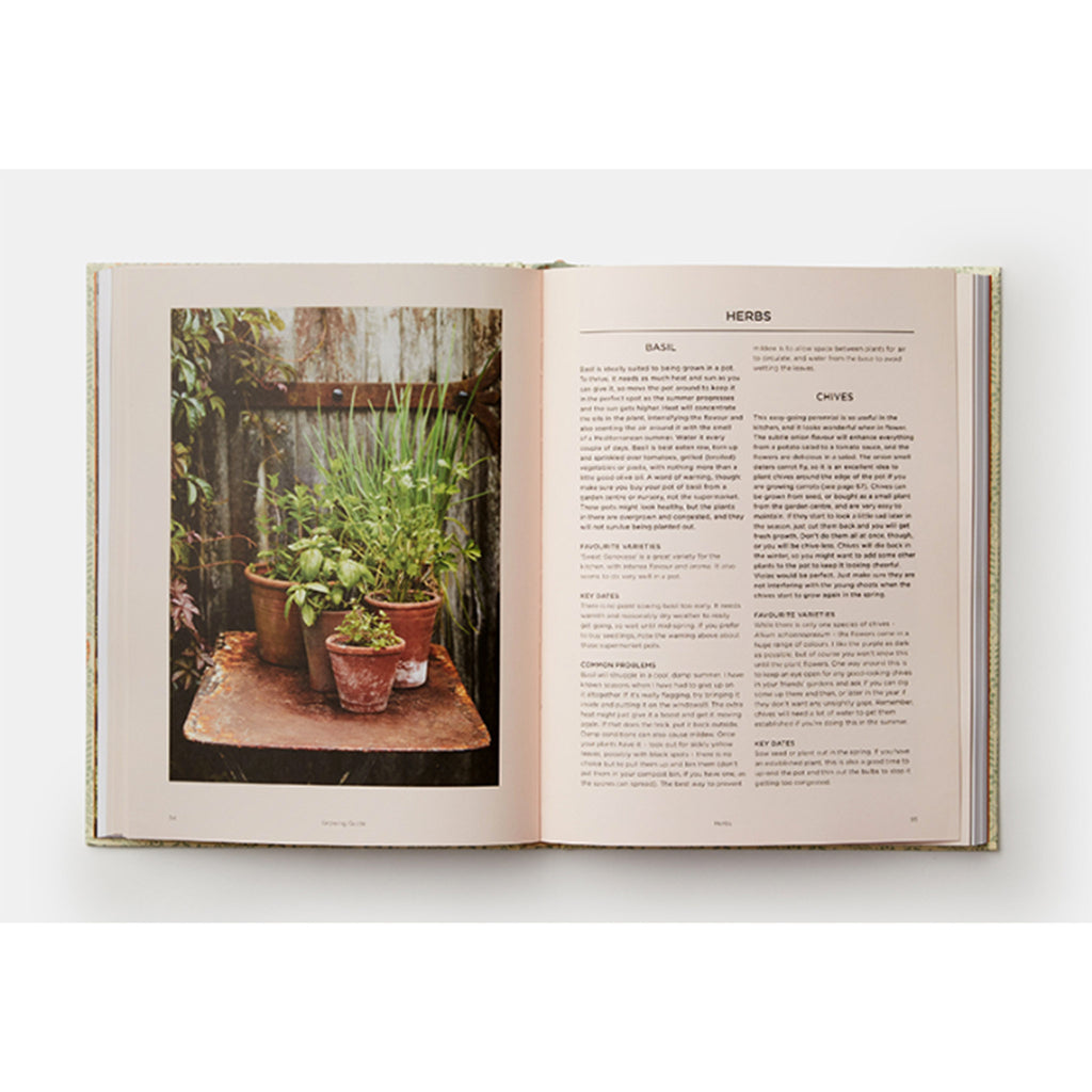 phaidon grow fruit and vegetables in pots planting advice and recipes from great dixter garden herb sample page