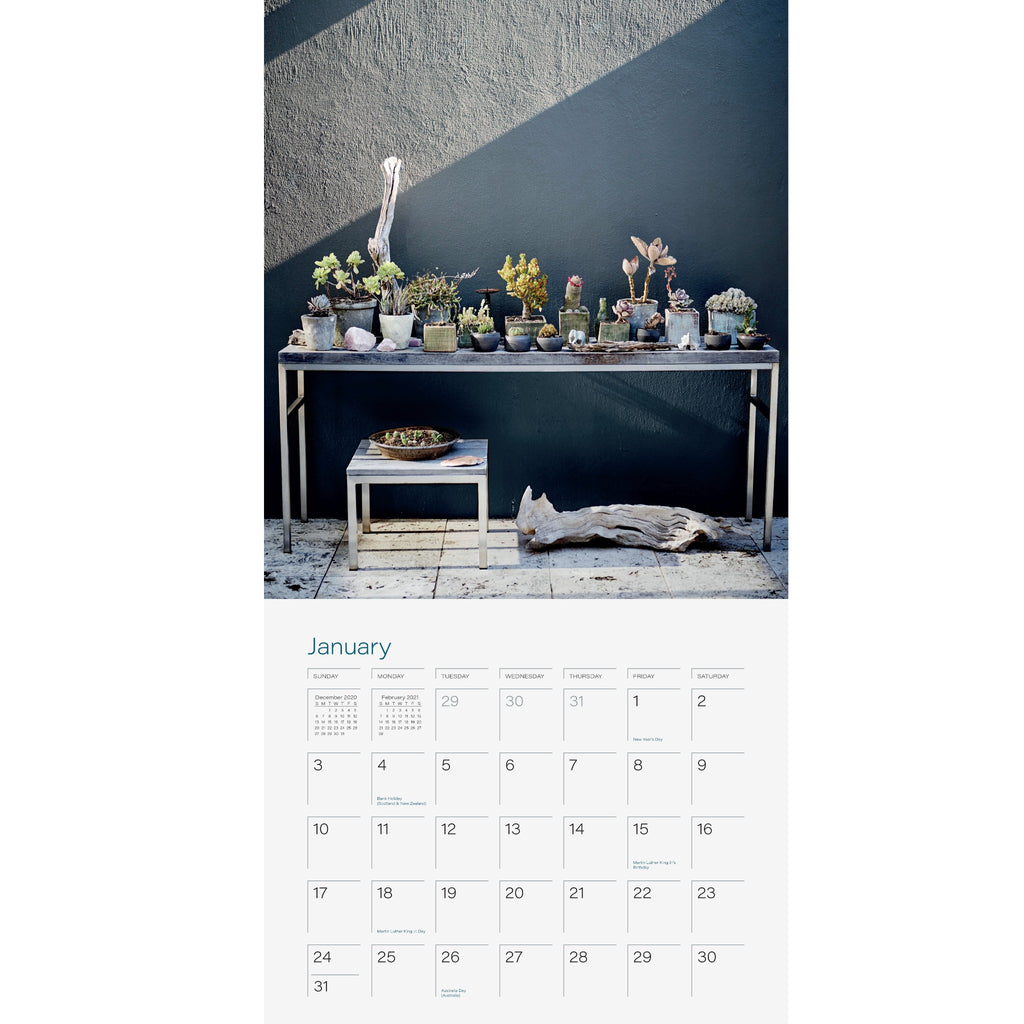 plant love 2021 calendar sample page with photograph of plants on a table with driftwood