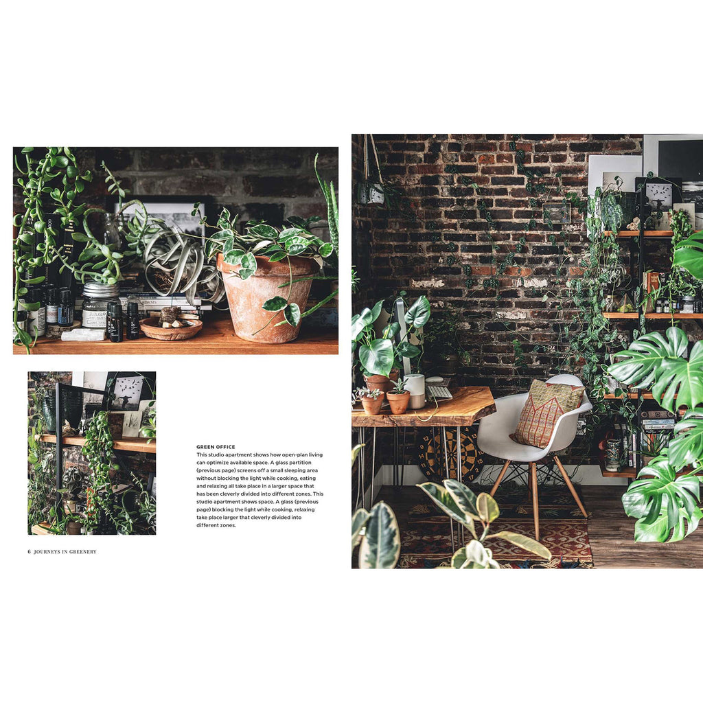 simon & schuster wild interiors beautiful plants in beautiful spaces book sample page 2