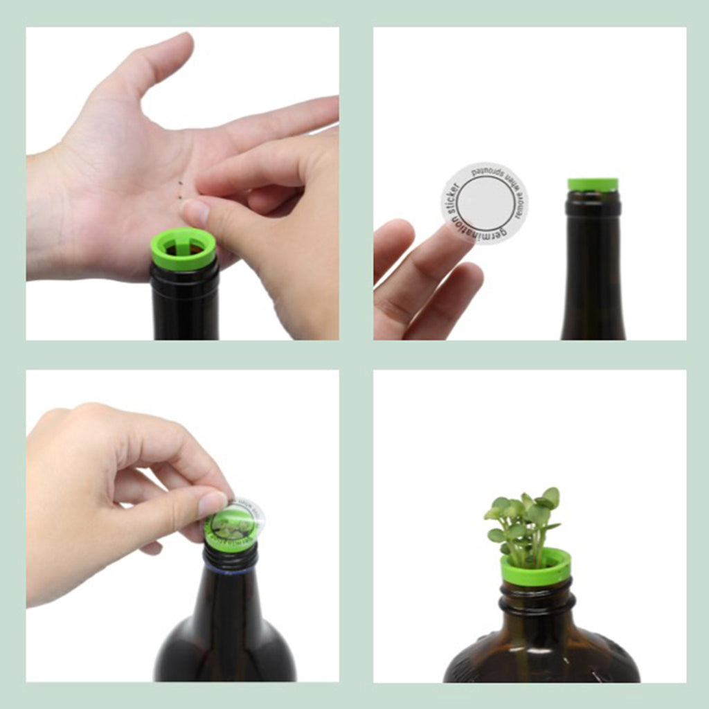 urban leaf culinary classics herb window bottle garden indoor grow kit setup process