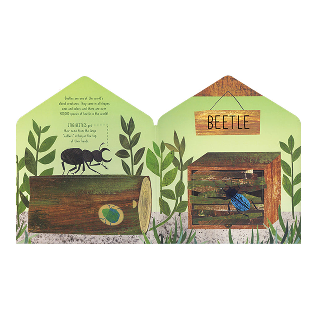 usborne bug hotel a lift the flap book of discovery interactive kids book of nature beetle page