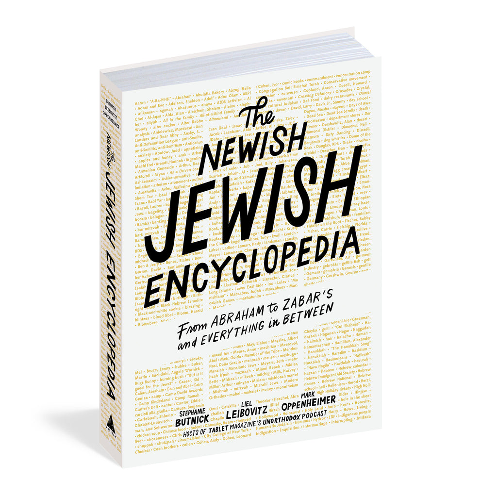 the newish jewish encyclopedia book cover