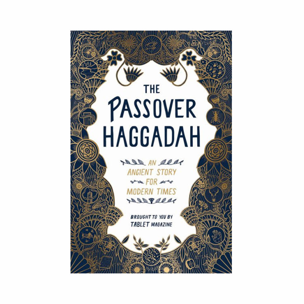 workman the passover haggadah an ancient story for modern times cover