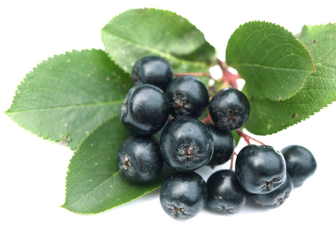 BioVi has Aronia Berry in it to greatly improve the supplements antioxidant properties.