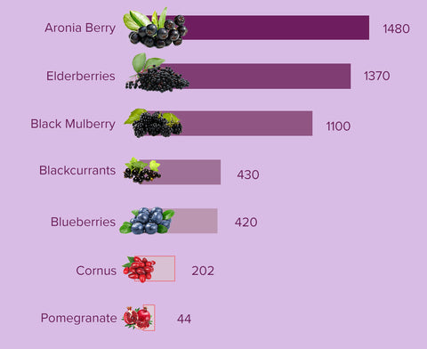 BioVi aronia berry comparison to other Superfruits.