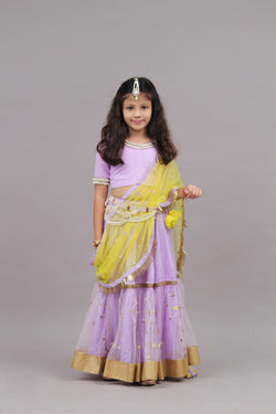 Mauve Ghaghara Set / Lehenga Set | Girls Indian Wear