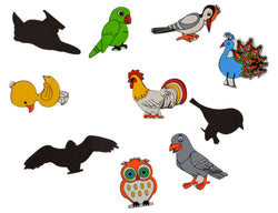 Magnetic Cutouts Birds (Set of 10)-Toys-THE MUM SHOP
