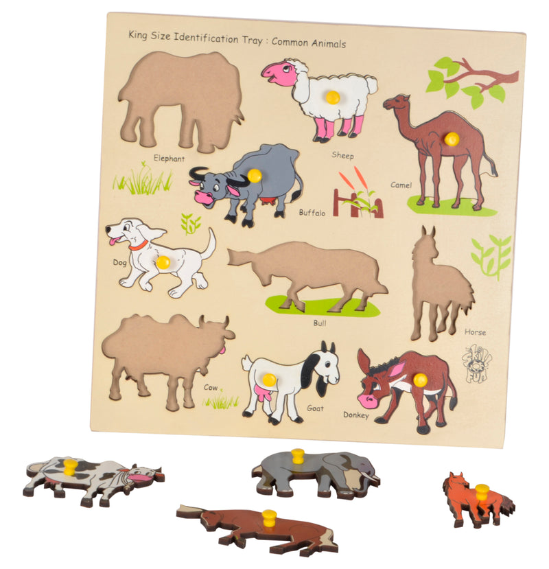 King Size Identification Tray Common Animals-Toys-THE MUM SHOP