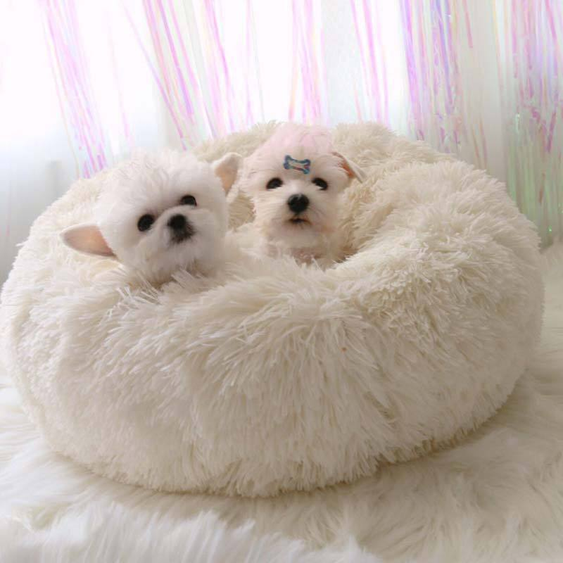 (Promotion! 50% OFF) Comfy Calming Dog/Cat Bed