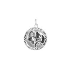 Reversible Capricorn Zodiac Sign Charm Coin Pendant Necklace in Sterling Silver