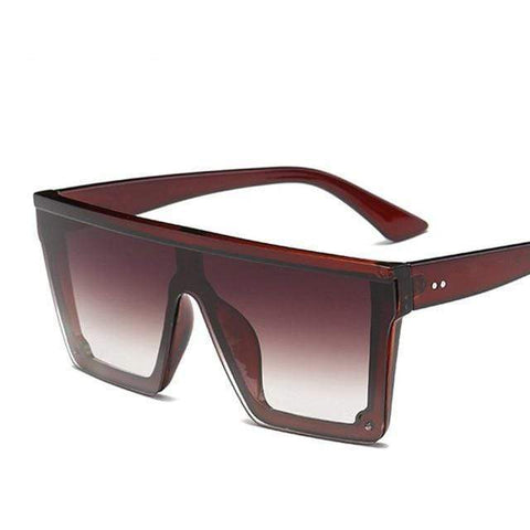 Reppit Sunglasses Brown/Brown Black Swan
