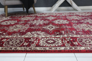 Arya Red Ziegler Traditional Ikat Rug