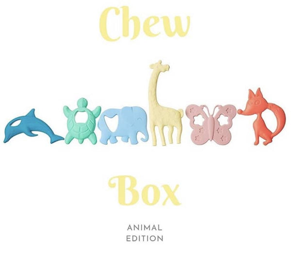 chew-box-teethers-for-baby