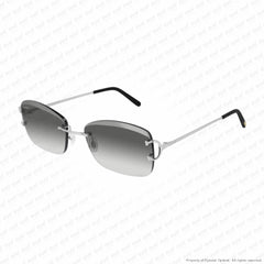 Cartier - Ct0010Rs Silver/grey Flash Anti Reflective (001) Sunglasses