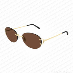 Cartier - Ct0029Rs Gold/pink Brown Anti-Reflect (002) Sunglasses