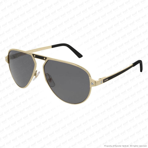 Cartier - Ct0101S Sunglasses