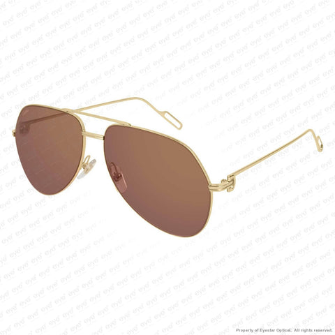 Cartier - Ct0110S Sunglasses