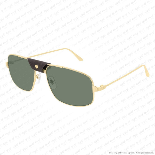 gold-green-polarized-ar-002