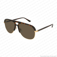 Gucci - Gg0292S Havana/green (003) Sunglasses
