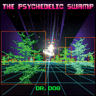 Dr. Dog - The Psychedelic Swamp - Pre-owned Vinyl