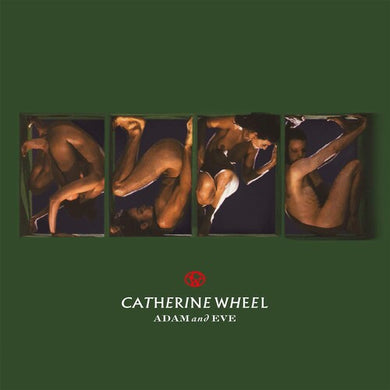 Catherine Wheel - Adam & Eve