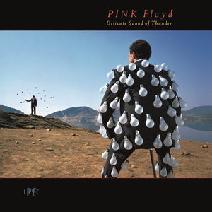 Pink Floyd - Delicate Sound Of Thunder (Live)