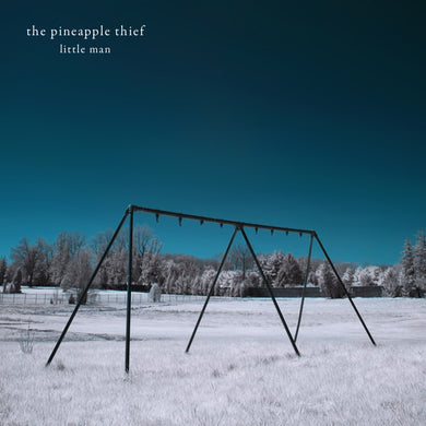Pineapple Thief - Little Man