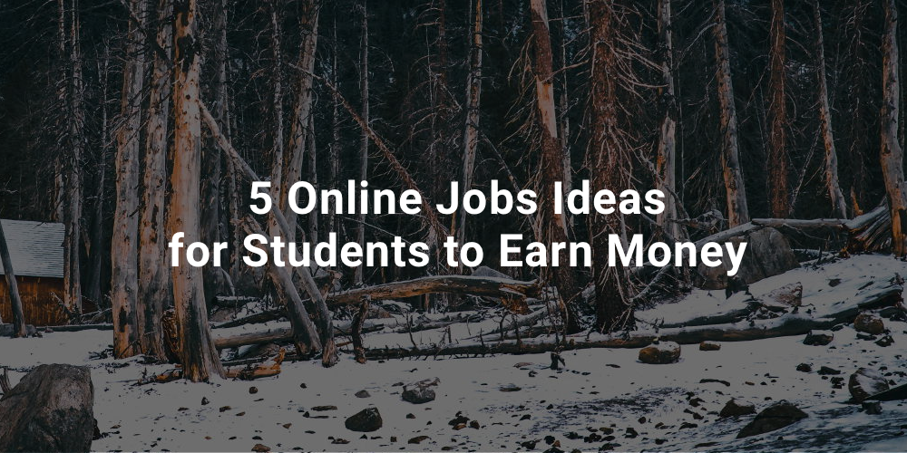 5 Online Jobs Ideas for Students to Earn Money