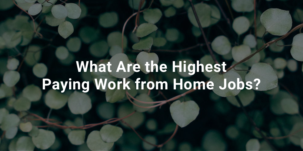 What Are the Highest Paying Work from Home Jobs?