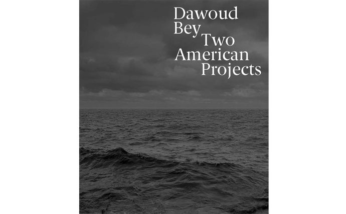 Dawould Bey:  Two American Projects