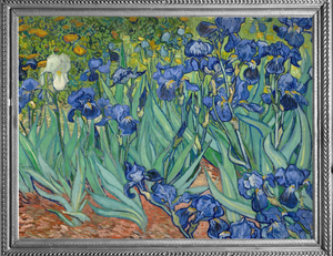 Fine Art RainCaper - Vincent van Gogh Irises Travel Caper