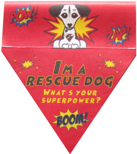I'm a rescue dog! What's your superpower?