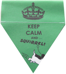 Keep calm and ... Squirrel!