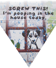 Load image into Gallery viewer, Screw this! I'm pooping in the house today-rain