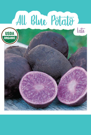1 lb. Organic All Blue Seed Potatoes (Late)