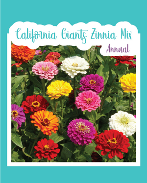 California Giants Zinnia Mix