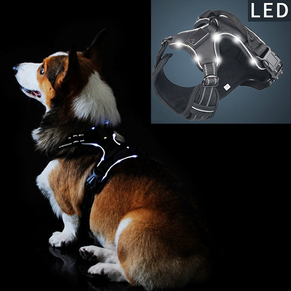LED Nylon Dog Flashing Safety Vest