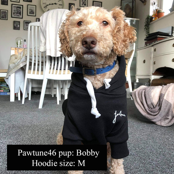 Customise your dog hoodie! Jet Black