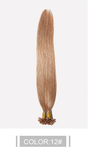 Ustar 100% Human Hair Quality U Tip Straight Hair Extensions # 2