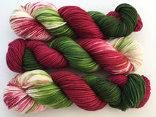 Poinsettia on 100% Superwash Merino DK