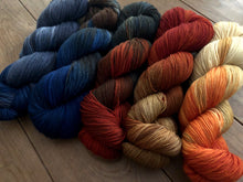 Reserved Order for Sharon: Country Road Yarn Set  on 75 Superwash Merino/25 Nylon Sock