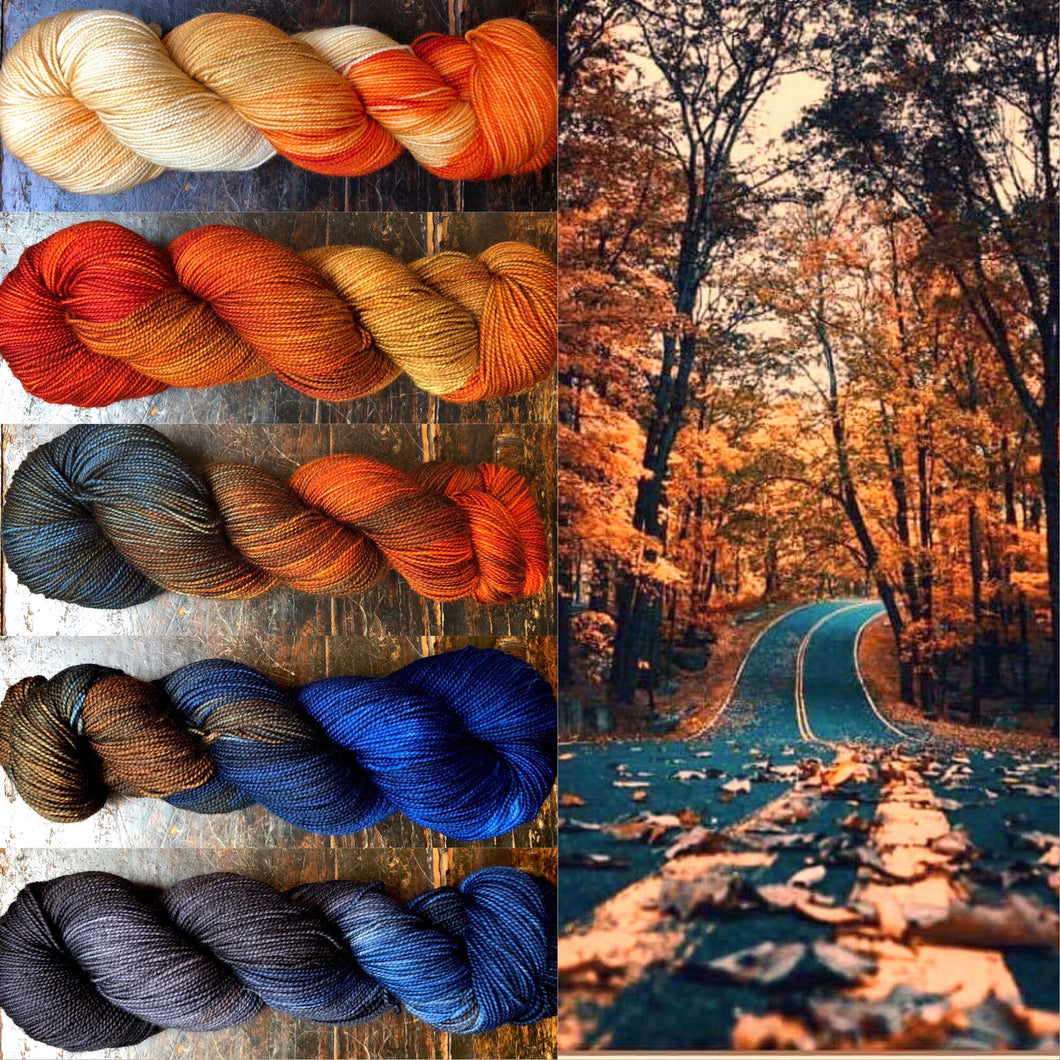 Reserved Order for Jean: Country Road Yarn Set  on 75 Superwash Merino/25 Nylon Sock