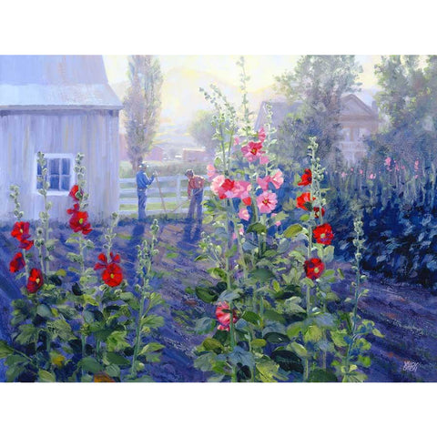 Sundown Hollyhocks